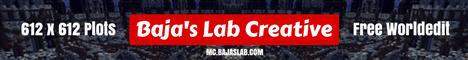 Bajas Lab