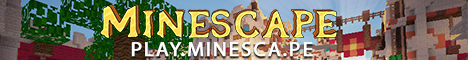 The Minescape Network